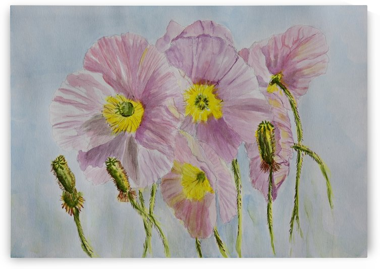 Pink Poppies by Linda Brody
