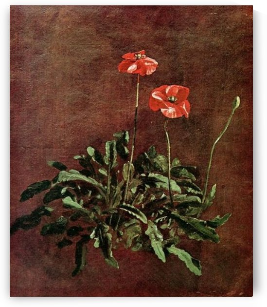 Study for Poppies by John Constable