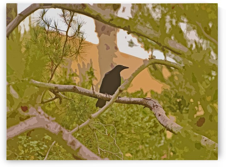 One Raven In Tree abstract 1 by Linda Brody
