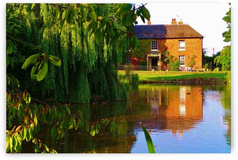 Fish pond Seckington by Andy Jamieson