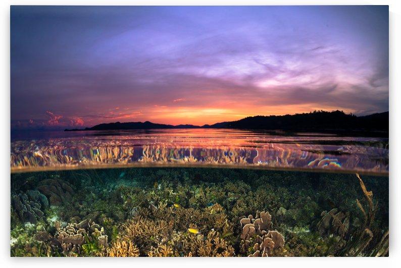 Raja Ampat sunrise by Cullen Kamisugi