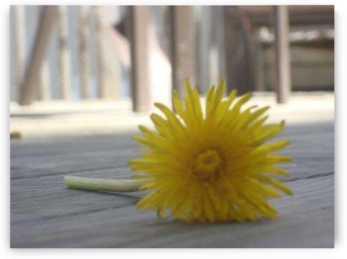 Yellow by Ashley Deslage
