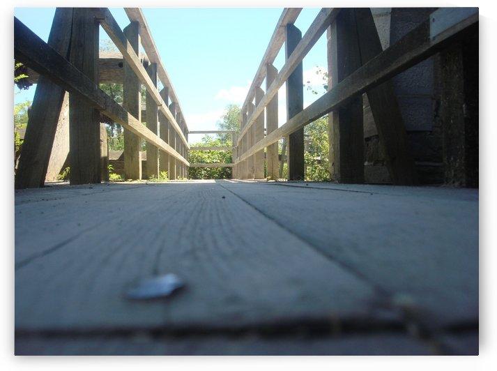 The Bridge by Ashley Deslage