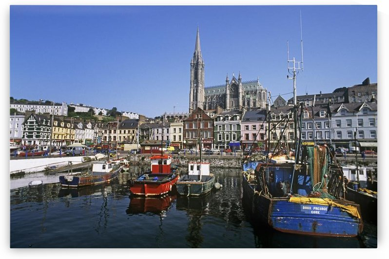 Boats Moored At A Harbor, Cobh, County Cork, Republic Of Ireland by PacificStock