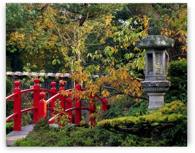 Red Bridge & Japanese Lantern, Autumn, Japanese Gardens, Co Kildare, Ireland by PacificStock