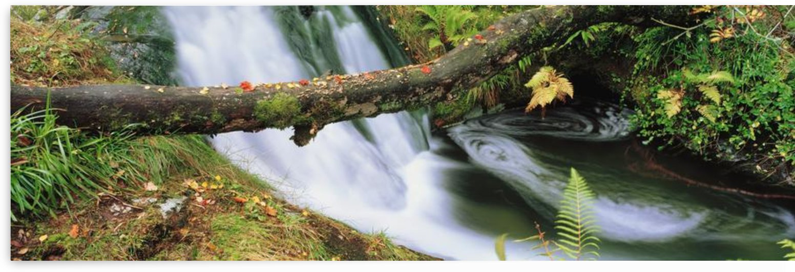 Ireland; Waterfall by PacificStock