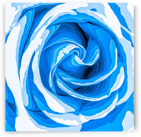 closeup blue rose texture abstract background by TimmyLA