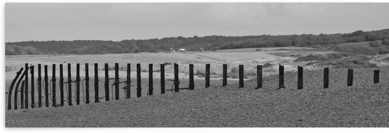 Beach fence by Andy Jamieson