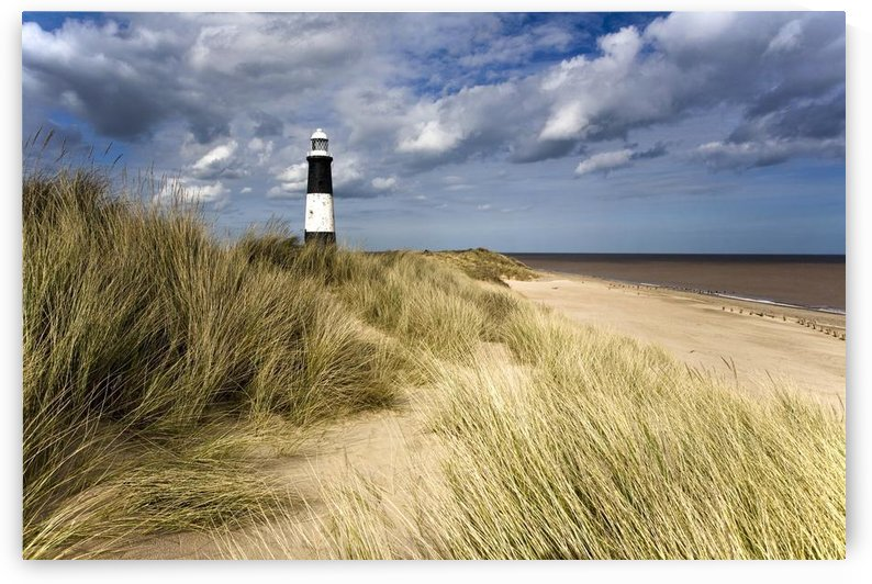 Lighthouse On Beach, Humberside, England by PacificStock