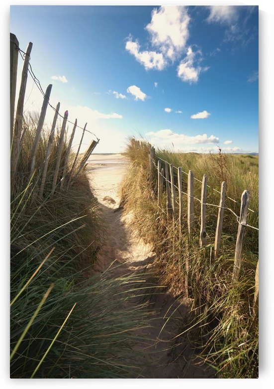 Pathway To The Beach, Beadnell, Northumberland, England by PacificStock