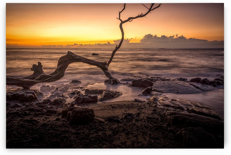 Hawaii Sunset by Andrea Spallanzani