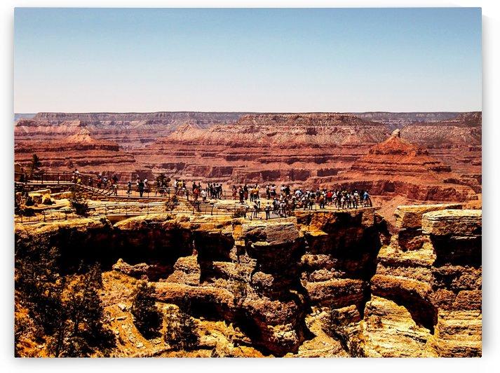 At Grand Canyon national park,USA by TimmyLA