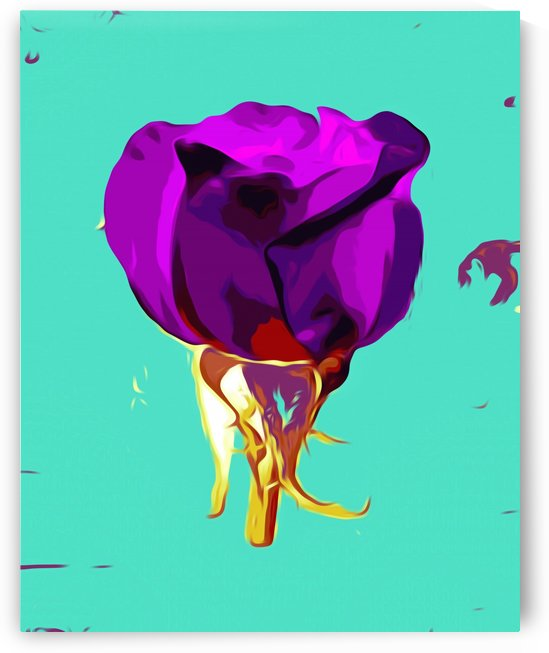 purple rose with gold stem and green background by TimmyLA