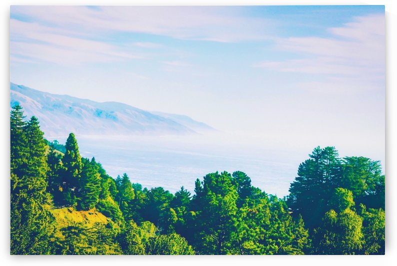 Beautiful ocean view with forest front view at Big Sur, California, USA by TimmyLA