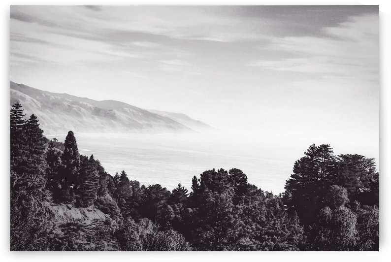 Beautiful ocean view with forest front view at Big Sur, California, USA in black and white by TimmyLA