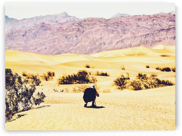 At Death Valley national park, USA in summer by TimmyLA