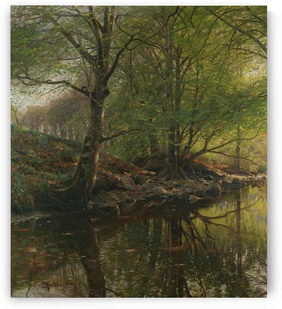 Landscape along a stream with clear water by Peter Mork Monsted