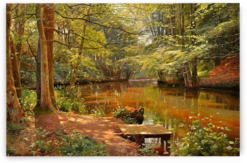 Glimpses of the sun in Saeby stream by Peter Mork Monsted