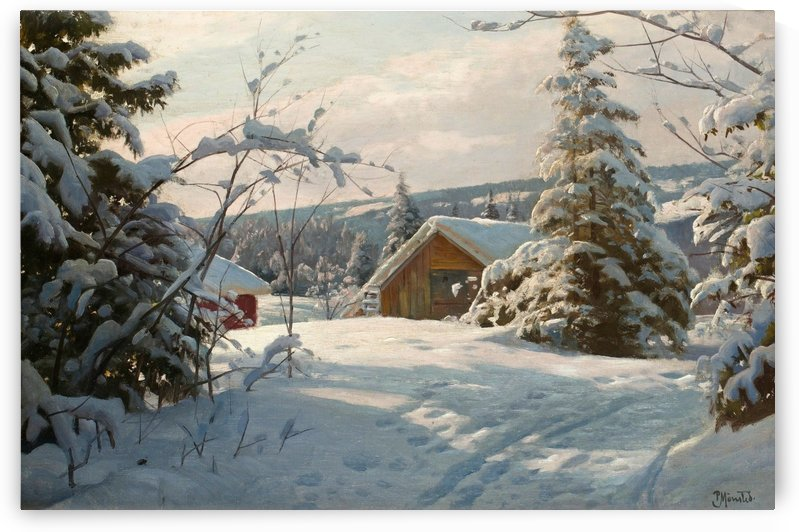 Sunny winter day by Peter Mork Monsted