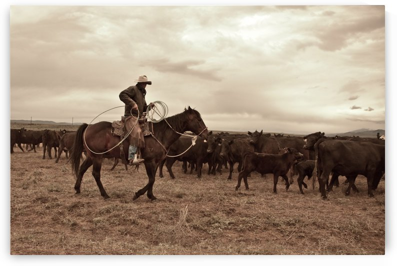 ©Lou Freeman Wild West 1020 3 2 by Lou Freeman