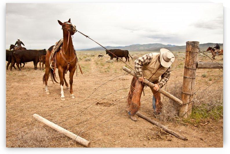 ©Lou Freeman Wild West 1020 7 by Lou Freeman