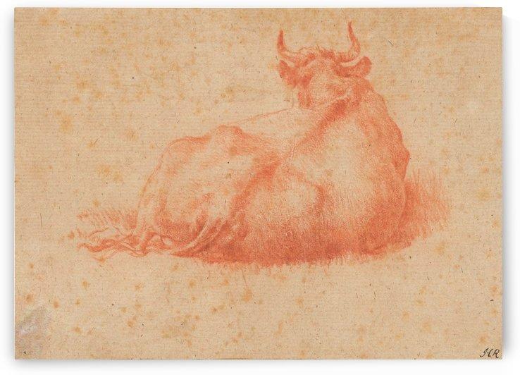 The back of a cow by Adriaen van de Velde