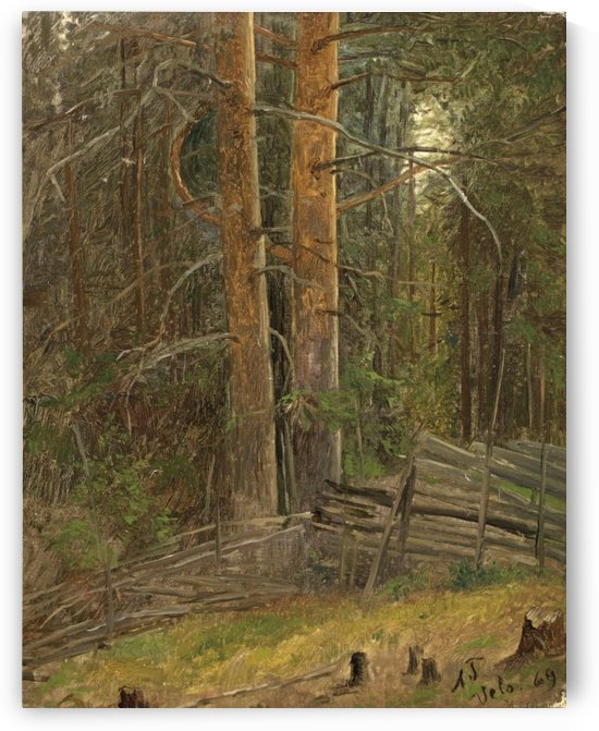 Trees in a forest by Adolph Tidemand