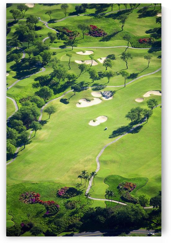 USA, Hawaii, Maui, Aerial Of Wailea Gold And Emerald Golf Courses; Wailea by PacificStock
