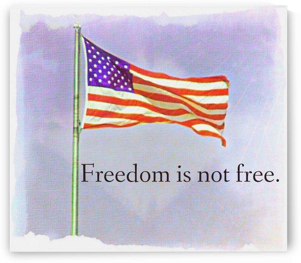 freedomIsnofree by Chazzi R  Davis