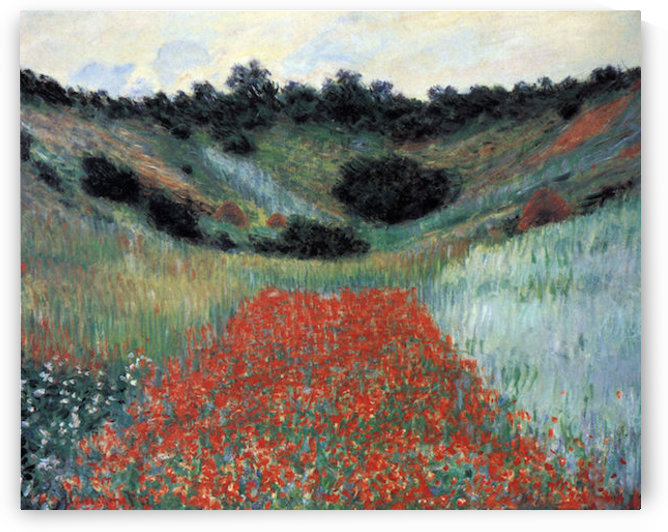 Poppy field in Giverny by Monet by Monet