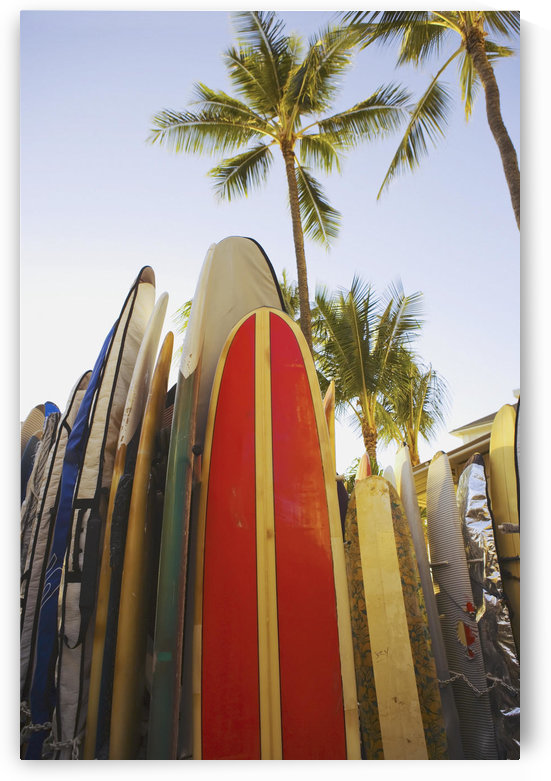 USA, Hawaii, Oahu, Close up view of colorful surfboards in surfboard rack on Waikiki Beach; Waikiki by PacificStock