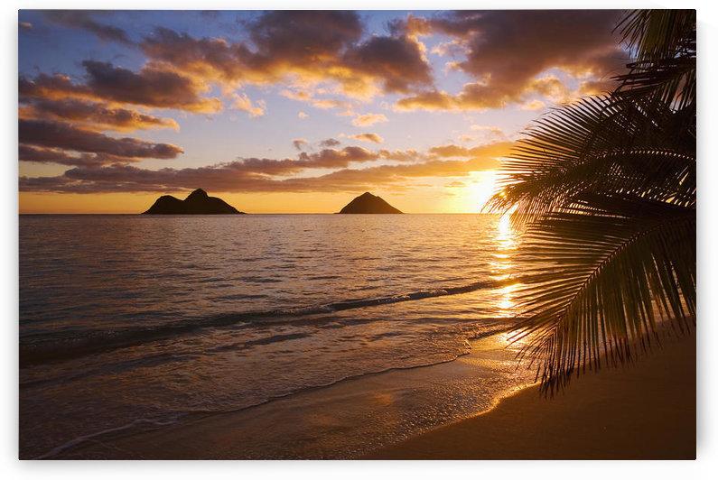 USA, Hawaii, Oahu, Lanikai Beach with Mokulua island in background at sunrise; Lanikai by PacificStock