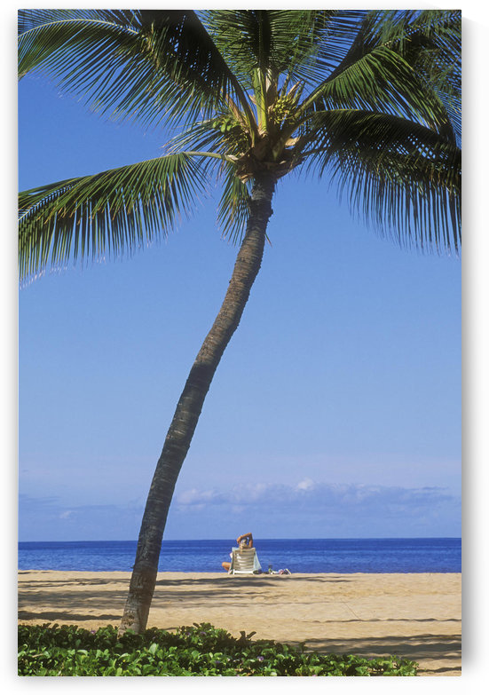 Hawaii, Lanai, Manele Bay Beach Park, Palm Tree And Woman On The Beach. by PacificStock