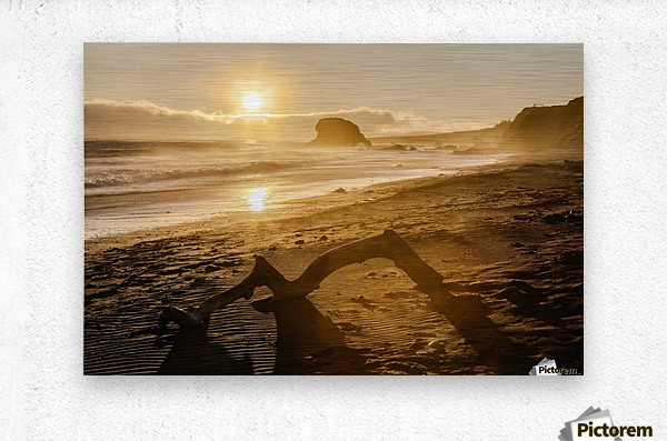Seashore at sunset, San Simeon State Park; California, United States of America  Metal print