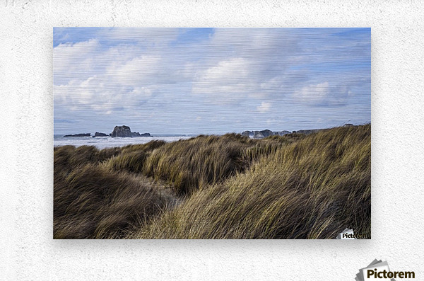 Grass and clouds frame a scene along the coast; Bandon, Oregon, United States of America  Metal print
