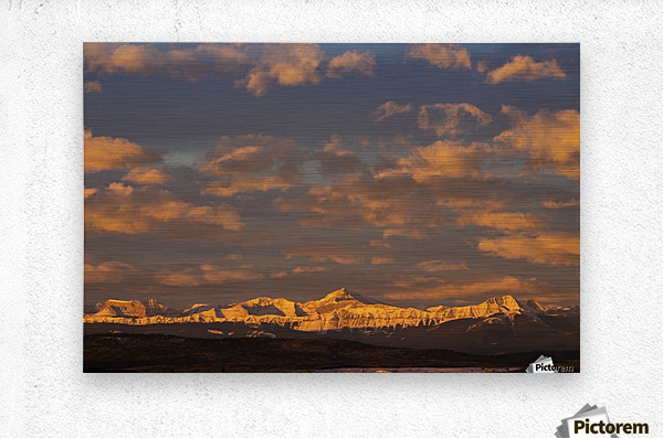 Glowing warmly lit snow covered mountain range and foothills with glowing clouds and blue sky at sunrise; Calgary, Alberta, Canada  Metal print