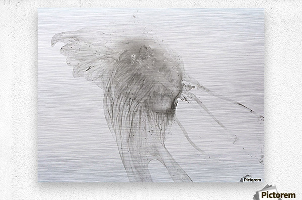 Jellyfish against a white background  Metal print