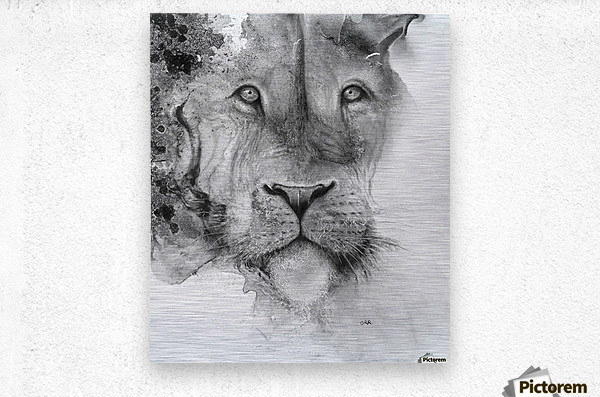 Illustration of a lion's face and a mottled background  Metal print