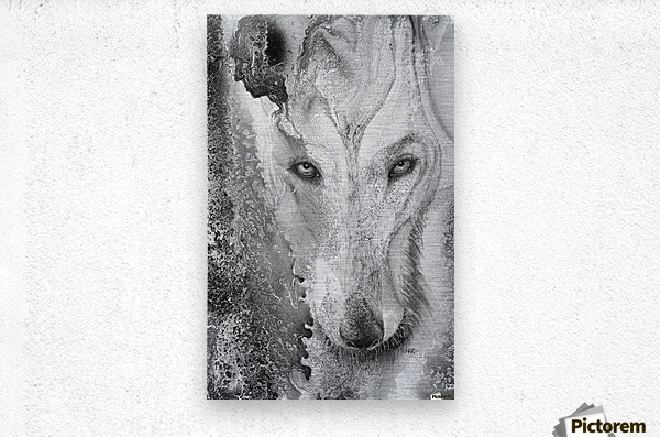 Illustration of a wolf and a mottled background  Metal print