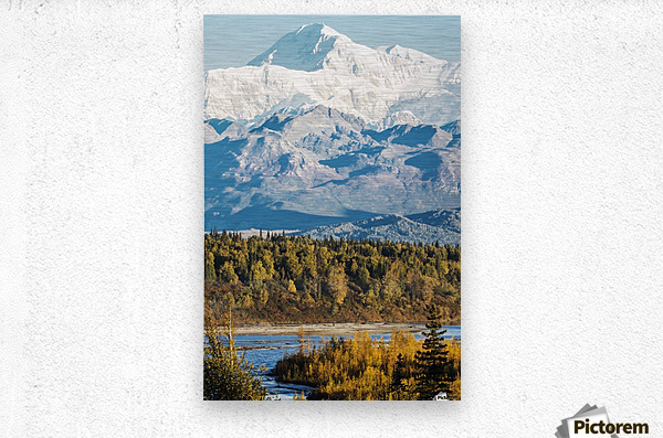Denali, viewed from the Parks Highway, interior Alaska, near South Viewpoint rest stop; Alaska, United States of America  Metal print
