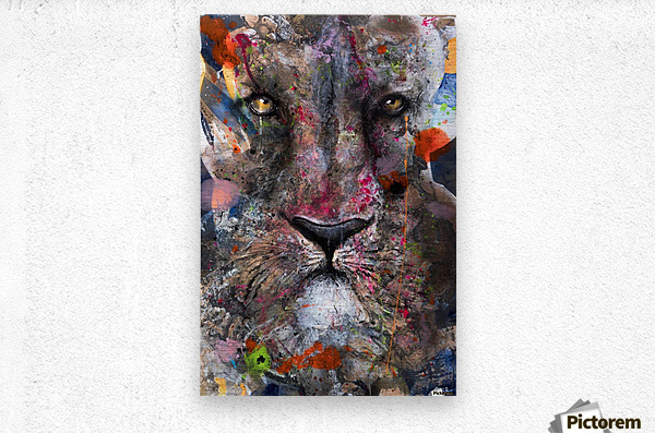 Illustration of a lion's face with colourful splashes  Metal print