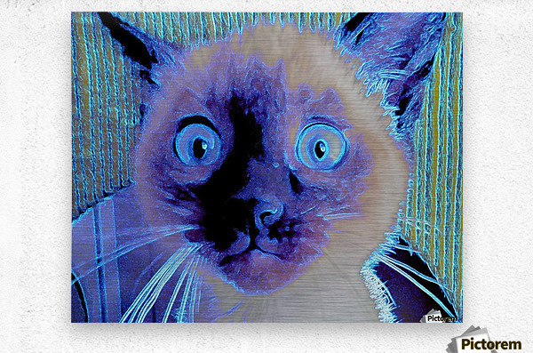 electric kitty  Metal print