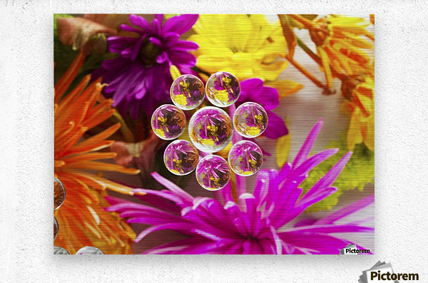 FLOWERS REFRACTION 9  Metal print