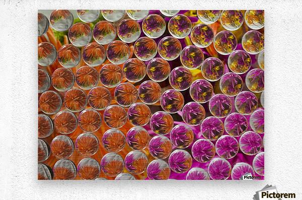 FLOWERS REFRACTION 4  Metal print