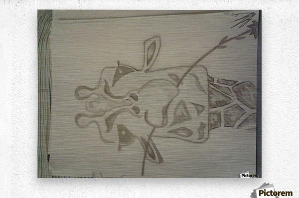 20170914_213830  Metal print