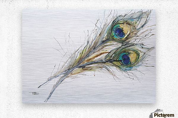 Watercolor Painting Of Two Peacock Feathers.  Metal print
