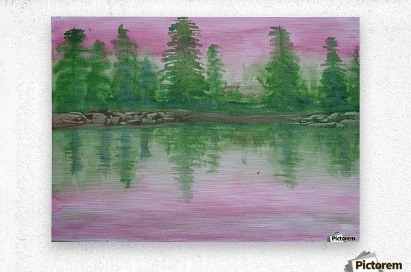 Reflections in the lake.  Metal print