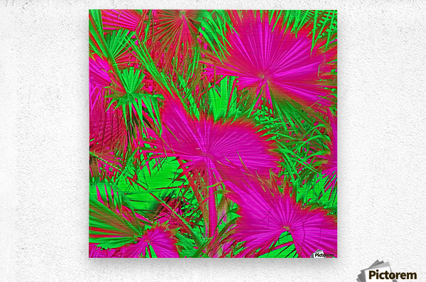 closeup palm leaf texture abstract background in pink and green  Metal print