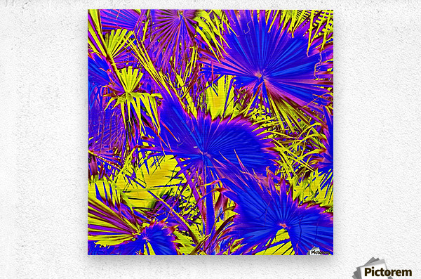 closeup palm leaf texture abstract background in blue pink and yellow  Metal print