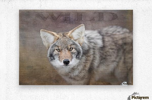 Wild  Metal print